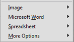 PDF to Word or Excel