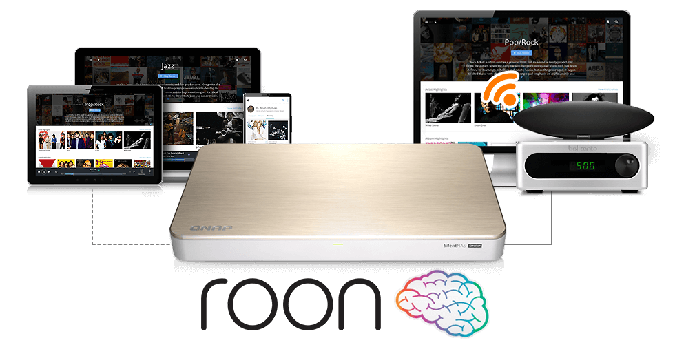 qnp hs-453dx roon-core